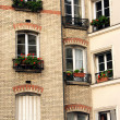 Paris windows — Stock Photo