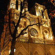 Notre Dame de Paris — Stock Photo #4949014