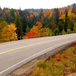 Fall highway — Stockfoto