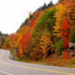 Fall highway — Stock fotografie