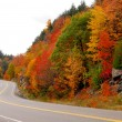 Fall highway — Stock Photo #4949110