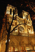 ノートルダム ・ ド ・ パリ — ストック写真