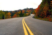 Fall highway — Stock Photo
