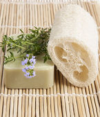 Natural lufah sponge with thyme soap — Stock Photo