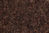 Tea loose dried tea leaves, texture — Stock Photo