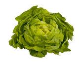 Fresh green salad - lettuce , isolated — Stock Photo