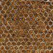 Boundless cigarette wall | Background — Stock Photo