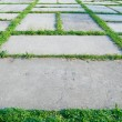 Pavement with grass #2 — Stock Photo