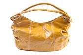 Female bag   Isolated — Stock Photo