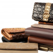 Stack of wallets #3 | Isolated — Stock Photo #3821637