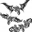 Stock Vector: Tattoos birds of prey