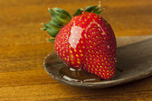 Strawberry with Honey — Stock Photo