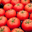 Organic red tomatoes - Stock Photo