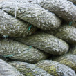 Coiled Rope Background - Stock Photo