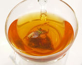 Rooibos tea — Stock Photo