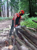 Woodcutter at work — Stock Photo