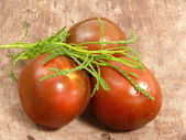 Chocolate tomatoes with olive herb — Stock Photo