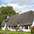 Thatched Cottage - Stock Photo