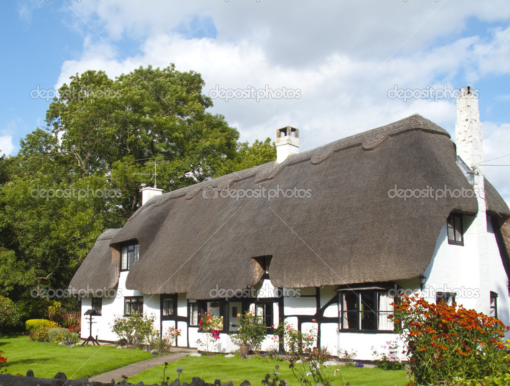 A lovely picture postcard thatched white cottage — Stock Photo #3088644