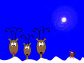 Reindeers and robin — Stock Photo