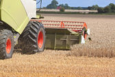 A combine harvester splitting the wheat — Stock Photo