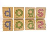 Wooden tiles - spelling DOGS — Stock Photo