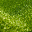 Artifical grass - Stock Photo