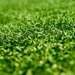 Astroturf — Stock Photo #3089547