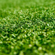 Stock Photo: Astroturf