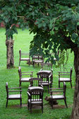Garden and chair — Stock Photo
