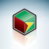 Guyana { South America } — Stock Vector