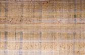 Papirus — Fotografia Stock