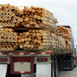 Truck Transporting Wood - Stock Photo
