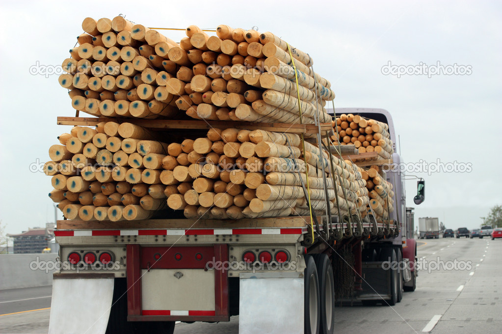 Truck transporting wood. — Stock Photo #3132047