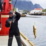 Fisherman on the pier on Lofoten island — Stock Photo