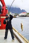 Рыбак на пирс на Лофотенские острова — Стоковое фото