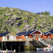 Stok fotoğraf: Cottages on island Skrova