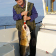 Fisherman with very big fish on the boat — Stock Photo #3701716