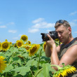 Stock Photo: Photographer in field of sunflowers in sunny day