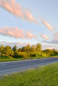 Country road in the summer morning — Stock Photo