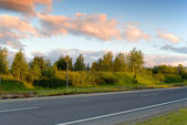 Country road in the early summer morning — Stock Photo