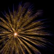 Fireworks — Stock Photo #3089471