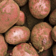 Red potatos — Stock Photo