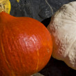Pumpkins — Stockfoto