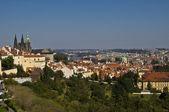 Castle of Prague — Stock Photo