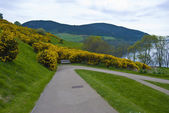 Loch Ness — Stock Photo