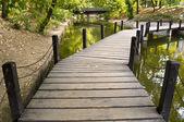 Parkta köprü — Stok fotoğraf