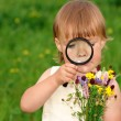 Royalty-Free Stock Photo: Child is looking at flowers
