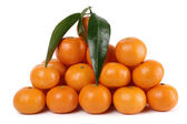 Heap of ripe mandarins — Stock Photo