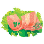 A piece of meat with salad — Stock Vector